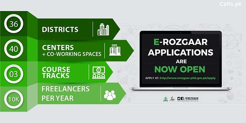 How to earn upto Rs. 80,000 Per Month with PITB E-Rozgaar Training Program