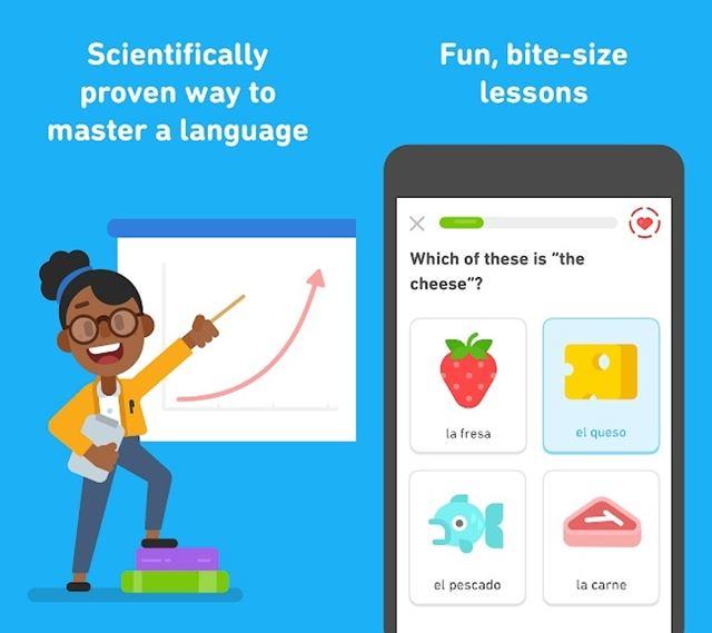 Duolingo App Playstore